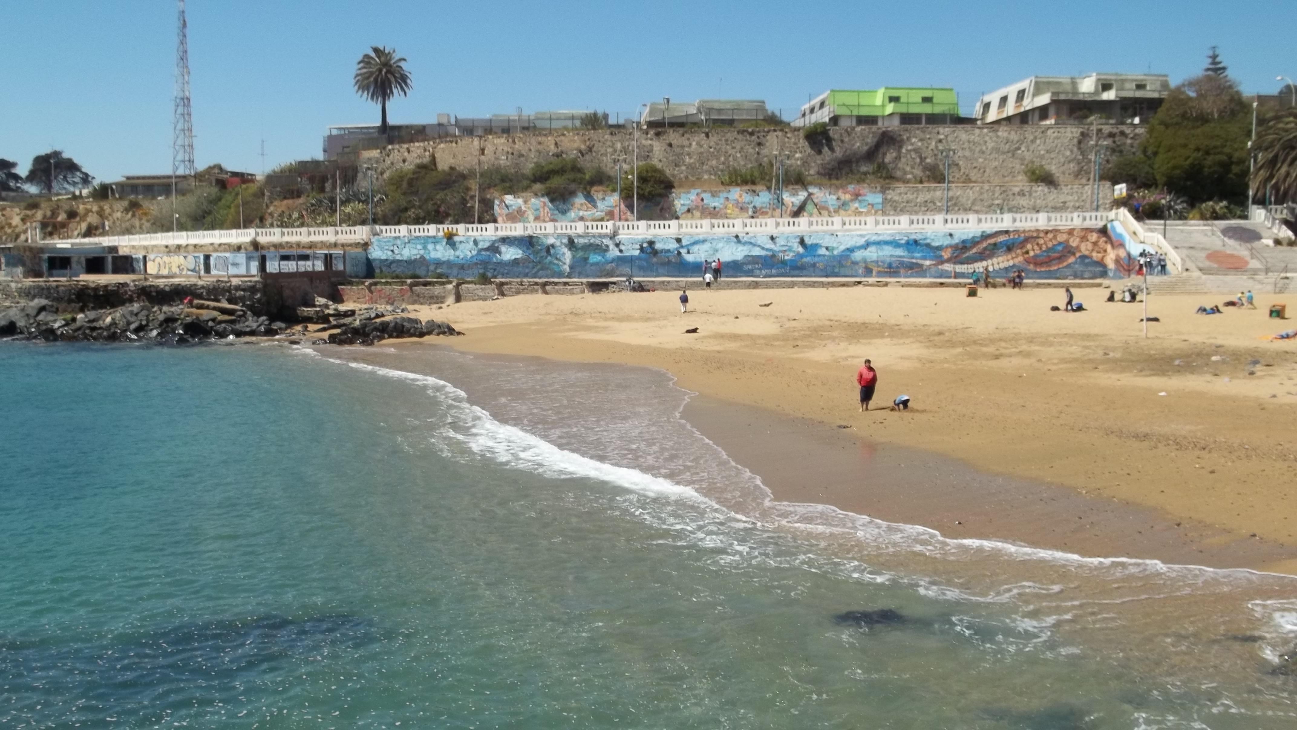 Resultado de imagen de playa las torpederas valparaiso