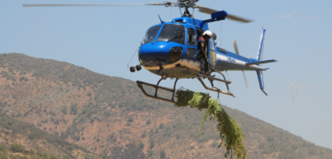 CANNABIS-HELICOPTERO